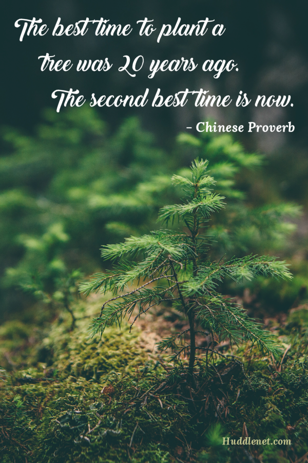 Motivation | Chinese Proverb - The best time to plant a tree was 20 years ago. The second best time is now. | www.huddlenet.com
