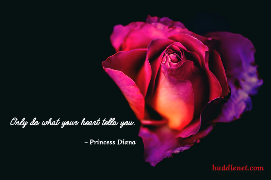 Inspiration | PRINCESS DIANA - Only do what your heart tells you. | www.huddlenet.com